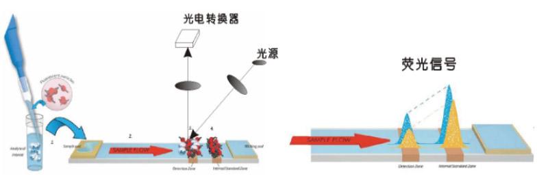 飞测iii免疫荧光干式定量检测仪